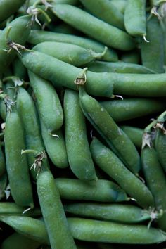 green snap peas from your local farmers market are the best check out this year