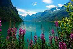 Norway by Miki Badt, via Flickr