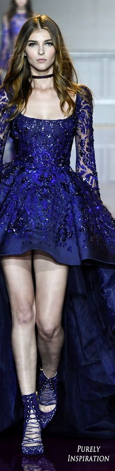 Zuhair Murad Fall 2016 Couture Fashion Show
