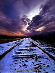 tracks into the night...