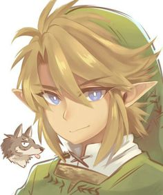 Link Legend of Zelda Twilight Princess The Legend Of Zelda, Legend Of Zelda Breath, Ben Drowned, Breath Of The Wild, Link Twilight Princess, Princess Zelda, Image Zelda, Link Art, Tp Link