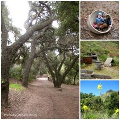 Oak Canyon Nature Center Trail, in Anaheim Hills off Nohl Ranch Rd.