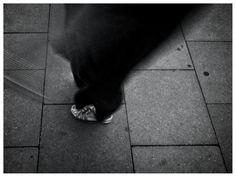 Streetwear, Ballet Dance, Dance Shoes, Instagram, Footwear, Pocket, Woman, City, Rose