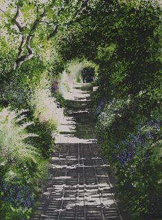 Path to Waterwynch