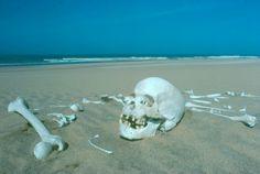 The stewardship of the Skeleton Coast