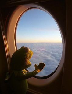 How could I resist a Kermit travel photo? 🙂 How could I resist a Kermit travel photo? Sapo Kermit, Les Muppets, Sapo Meme, Living Puppets, Frog Wallpaper, Cute Love Memes, Kermit The Frog, Reaction Pictures, Aesthetic Wallpapers