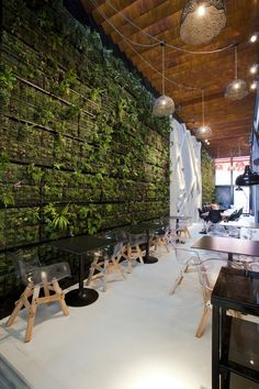 Love the living green wall. (Thank goodness for Annie Mackey in my life). I would probably go with a partial wall/or wall hanging.