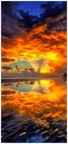 "beautymothernature: ""Sunrise on a Lake mother nature moments "" Nature Pictures, Cool Pictures, Beautiful Pictures, Beautiful World, Beautiful Places, Beautiful Beautiful, Beautiful Scenery, Absolutely Gorgeous, Landscape Photography"