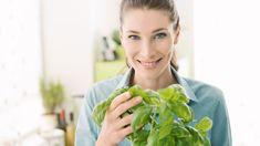 Many of us swear by herbal remedies like Echinacea and St John's Wort. Herbal Remedies, Herbalism, Herbs, Tips, Health, Natural, Modern, Food, Herbal Medicine