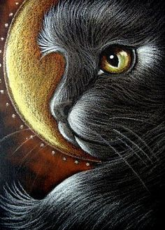 diy diamond painting black cat moon puzzle picture embroidery diamond mosaic home stickers children painting decoration room I Love Cats, Crazy Cats, Cat Embroidery, Cat Profile, Black Cat Art, Black Cats, Gatos Cats, Artist Portfolio, Cats And Kittens