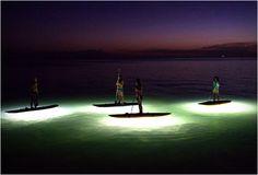 nocqua-2000-board-led-lights-4.jpg