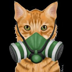 GasC by NeishatheArtist Crazy Cat Lady, Crazy Cats, Dont Breath, Breathe Easy, Staying Alive, Deviantart, Logo, Animals, Logos