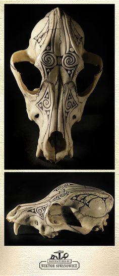 Burek's Skull by WSi.deviantart.com on @DeviantArt