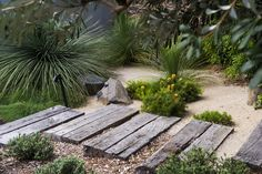 Brilliant garden path and walkways design ideas 106 bush garden, dry garden, grav Bush Garden, Dry Garden, Garden Paths, Australian Garden Design, Australian Native Garden, Monet Goyon, Design Patio, Path Design, Coastal Gardens