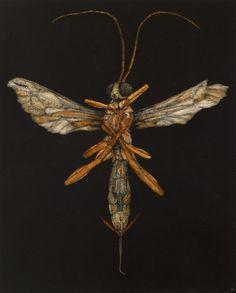 Nicholas Blowers, Angel, oil on paper