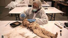 Quinto de Ebro: momias con 300 años de antigüedad, en el subsuelo de la iglesia