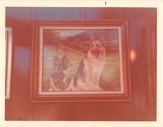 Photograph Snapshot Vintage Color: Dog Painting Decor Wall 1960's