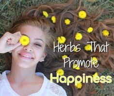 Happy Herbs – Try These for Happiness and Calm