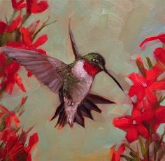 "Daily Paintworks - ""Effortless"" - Original Fine Art for Sale - © Krista Eaton Daisy Painting, Feather Painting, Hummingbird Painting, Red Hummingbird, Hummingbird Tattoo, Hummingbird Pictures, Butterfly Wall Art, Bird Drawings, Weird Art"
