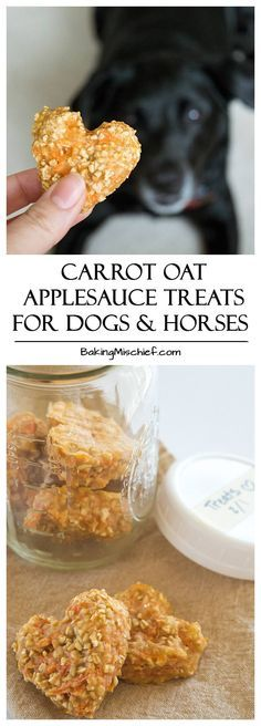 Dog Treats :: Carrot Oat Applesauce Treats - Quick and easy four-ingredient treats for dogs and horses. From Baking Mischief Puppy Treats, Diy Dog Treats, Dog Treat Recipes, Healthy Dog Treats, Dog Food Recipes, Doggy Treats Recipe, Healthy Pets, Homemade Horse Treats, Dog Biscuit Recipes