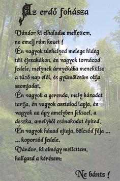 Az erdő fohásza Nature Is Speaking, Faith, Education, History, Quotes, Life, Quotations, Historia, Loyalty