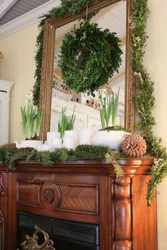natural touches: boxwood greens, w/ white candles, narcissus in white planters, lg. pinecones