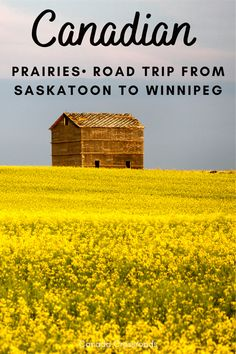 Road trip from Saskatoon to Winnipeg Canada | Travel through the Canadian Prairies summer road trip guide | Canada road trip planner guide #roadtrip #prairies #canada Canada Destinations, Road Trip Destinations, Texas Travel, Travel Usa, Travel Guides, Travel Tips, Canadian Prairies, Canada Summer, Canadian Travel