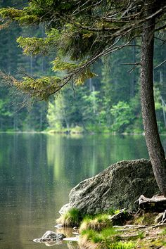 Lake in West Bohemia, Czechia Prague, Seen, Central Europe, Amazing Destinations, Czech Republic, Mystery, Amazing Nature, Nature Photos, Wonders Of The World