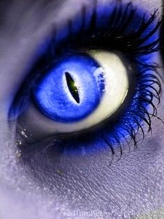 Ideas Eye Blue Photography Makeup For 2019 Cool Contacts, Colored Eye Contacts, Beautiful Eyes Color, Creepy Eyes, Demon Eyes, Eyes Artwork, Aesthetic Eyes, Makeup Quotes, Eye Quotes