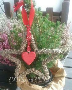 KOTI&SISUSTUS JOULU VALMISTELUT...Minun MINI Joulukuusi on Puutarha, Parvekkeella tänä Jouluna. MISSÄS Se iso Kuusi on, Kuka Tietää?...Pitäisi vielä valot keksiä jostain...HYMY #sisustusblogi #bloggaaja #sisustus #koti #joulu #minijoulukuusi #mini #joulukuusi #valmistelut #puutarha 💡🎅☺