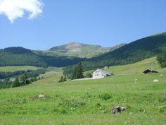 Meadows  (Valle d'Aosta-Italy)