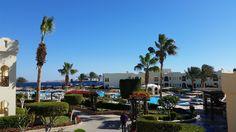 Sea Club Resort - Sharm el Sheikh 5* oтзывы и цены (Египет/Шарм-эль-Шейх) - TripAdvisor