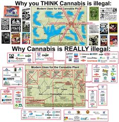 why-cannabis-is-really-illegal-full