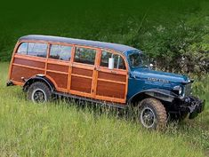 Power Wagon-the vet's car in the story of Ian's Trust