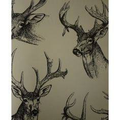 'Stags Heads' is part of the Auction House range by Sharon Jane. A range inspired by the eclectic products brought to Auction houses. The Stags Head wallpaper is an instant classic, adding a touch of charm and elegance to any room. Stag Wallpaper, Hunting Wallpaper, Home Wallpaper, Glamour Wallpaper, Feature Wallpaper, Summer Wallpaper, Garden Lodge, Garden Bar, Ski Lodge Decor