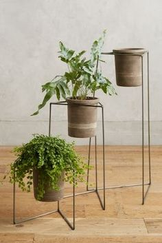 Plant Stand Trio | Anthropologie
