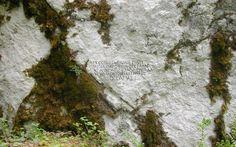 Park prirode Velebit - Parkovi Hrvatske