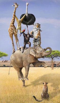 "♂ Dream Imagination Surrealism Surreal art animals ""Mighty Meerkat"" by Shorra"