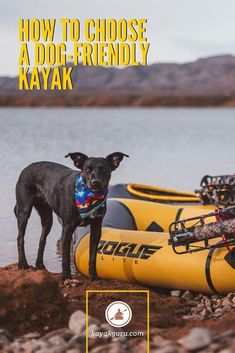 How Do You Choose A Dog-Friendly Kayak? You need to look at: Dimensions Sit-On-Top or Sit-In Kayaks Single Or Tandem Kayaks Inflatables vs Hardshells Materials Used Safety is important. Have your dog wear a PFD! Kayaking With Dogs, Kayaking Tips, Whitewater Kayaking, Sit On Kayak, Canoe And Kayak, Canoe Camping, Canoe Trip, Kayak For Beginners, Choosing A Dog
