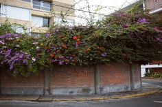 Lima, Peru  | Flickr - Photo Sharing!