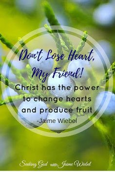 Don't lose heart my friend! Christ is the source of the growth. As His followers and disciples, we are to plant the seed and water it. Christ alone has the power to turn hearts and produce fruit. Seeking God With Jaime Wiebel: Planting the Seeds & Sitting Among Friends