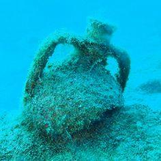 Ayvalık dalış okulu - ida dalış merkezi #scuba #scubadiving #diving #underwater #dalisnoktam #kaş #kaşdalış #dalışokulu #daliskursu #idadalismerkezi www.idadiving.com