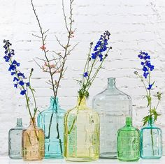 Gekleurde vazen