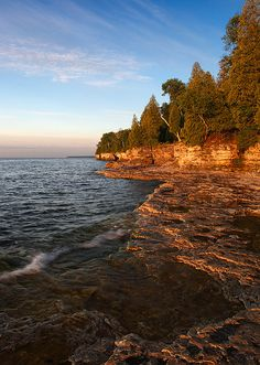 Cave Point County Park   Sturgeon Bay   Door County & Cave Point Tree Tentacles Canvas Print / Canvas Art by Mark David ... pezcame.com