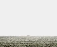 TAMAS DEZSO PHOTOGRAPHER - HERE, ANYWHERE (2009 - ongoing)