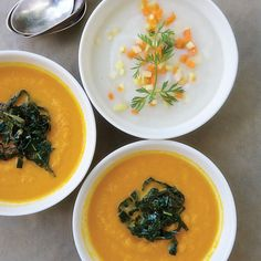 Make it vegetarian with vegetable stock! Recipe: Deborah Madison's Ivory Carrot Soup with a Fine Dice of Orange Carrots Carrot Recipes, Soup Recipes, Vegetarian Recipes, Healthy Recipes, Yummy Recipes, Dinner Recipes, Vegetarian Cookbook, Dinner Ideas, Healthy Soup