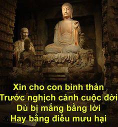 4 điều Đức Phật chỉ lối để xóa bỏ phiền muộn>> Phật dạy về nhân sinh, nhớ và làm theo thì không chỉ thanh thản hơn mà còn tích cực hơn, lạc quan hơn. Trên đời có ai mà không muốn thanh thản, có ai mà không muốn thanh tâm. Chỉ vì nỗi nhân tình thế thái chuyển dời, tạo hóa xoay vần đưa đến những tình huống chớ trêu. Những lúc ấy, đôi ba dòng ngắn ngủi ở trên hi vọng sẽ giúp các bạn tự tìm thấy lối ra cho riêng mình.