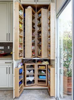 Traditional Pantry with Swing Out Complete System Tall/Pantry Accessories, High ceiling, Chadwick Excel Raised Panel Door