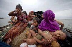 Puluhan Ribu Rohingnya Bahayakan Diri Seberangi Samudera Hindia | Banua Syariah