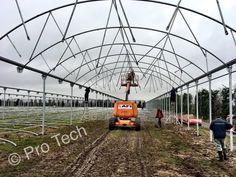 Greenhouse installation in Kent. Garden, Homesteads, Garten, Lawn And Garden, Gardens, Gardening, Outdoor, Yard, Tuin